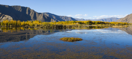 tibet: autumn landscape of lake, mountain and treeline