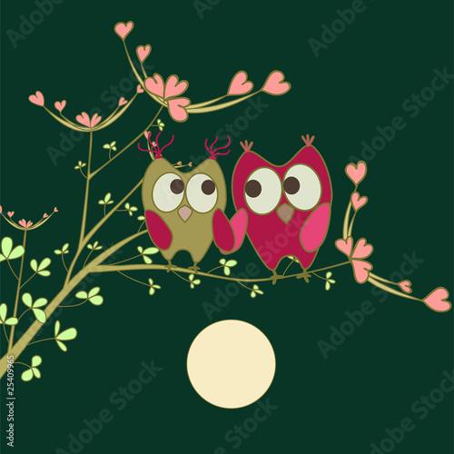 Owls In Love. cute owls in love