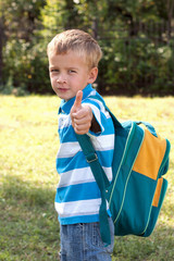 Portrait of a boy with a school backpack.