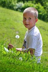 Junge und Sommerwiese