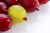 Yellow gooseberry among red gooseberries