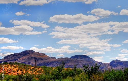 Arizona  Landscape - 25434713