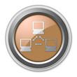 "Bronze 3D Style Button ""Network"""