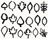 Different leafs handwriting vector poster