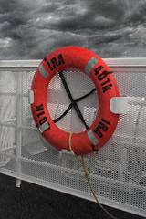 IRA 401k Life Ring
