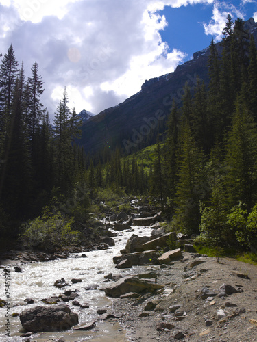Flowing River in the Canadian Rockies
