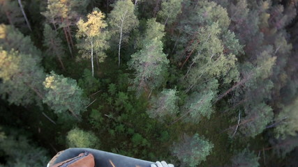 view from a balloon basket on trees