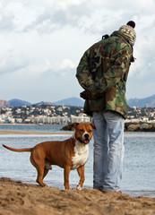 american staffordshire bull terrier et son maître en vacances