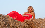 Beautiful blondie on a haystack
