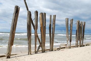 Holzstämme auf dem Strand in Miedzyzdroje (Misdroy)
