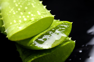 Aloe leaf with juice droplet with reflection