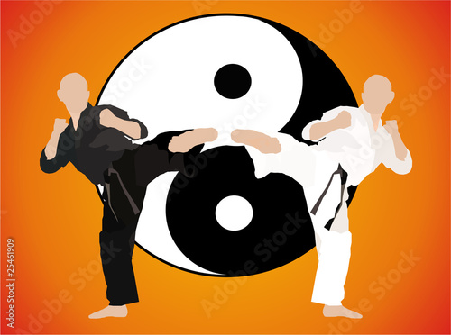 karate - fight duel (jing jang)