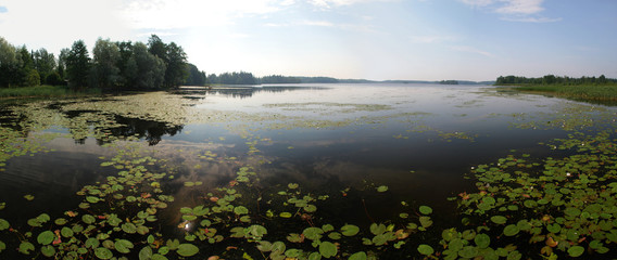 Beutyful lakes and forests of Uusimaa region in Finland