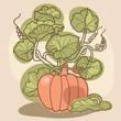 stylish  background with decorative pumpkin