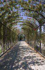 Vienna - Schonbrunn palace - garden