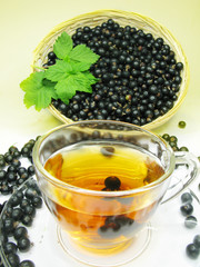 herbal tea with currant extract