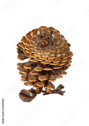 Isolated natural pine cone made as a grandfather
