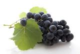 Fototapety Grappe dde raisin noir