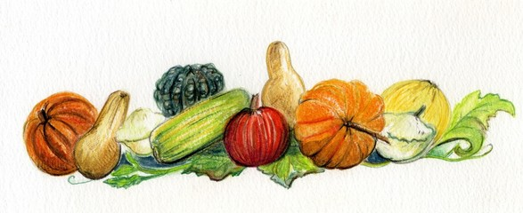 Autumn Pumpkins and Squash
