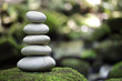 Leinwanddruck Bild - Balance and harmony in nature
