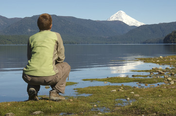 looking  the lake Lacar (parco lanin - argentina)