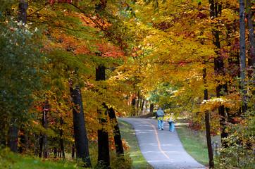Autumn bike trail