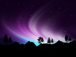 Leinwanddruck Bild - Northern lights