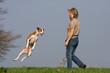 Frau mit Hund beim Apportieren