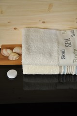 Spa sea shell