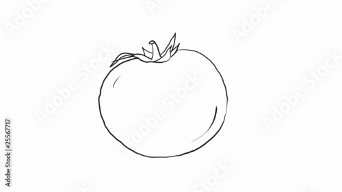 Drawing of a tomato. HD