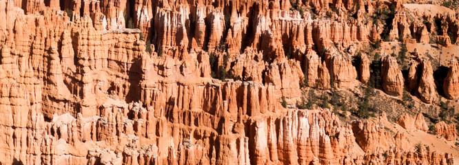 Bryce Canyon National Park detail, Utah
