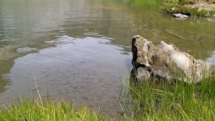 Lac montagne_3