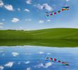 Kite reflection