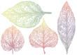 textured autmn leaves, vector