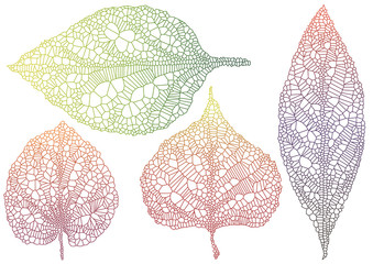 textured autmn leaves, vector