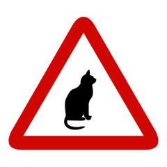 atencion gato