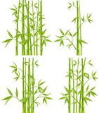 Fototapety Bamboo, vector (mesh)