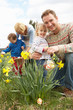 Family On Easter Egg Hunt In Daffodil Field