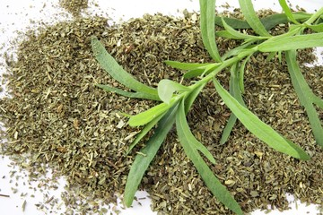 tarragon dry herb and plant