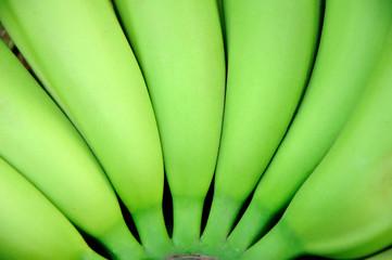 banana en forma de arco #2