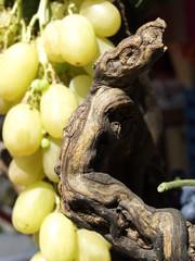 Fruta en un mercado de  Paris