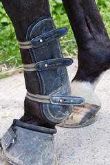 tendon boot