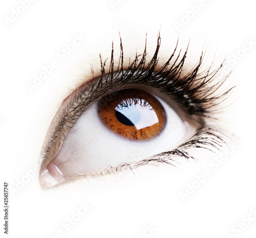Beautiful Eye of Woman over white background