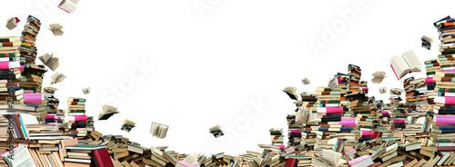 Leinwanddruck Bild Book sellout