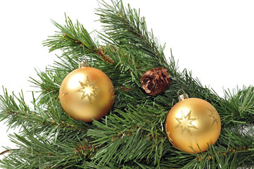 Branch of an evergreen Christmas decorated with gold balls