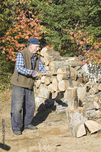 elderly  lumberjack in action