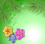 Floral background for an insert of the text or a photo poster
