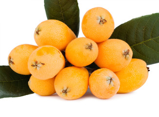 Group of loquat fruits isolated on white background