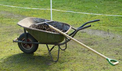 Wheelbarrow with manure