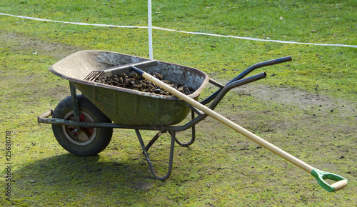 Wheelbarrow with manure
